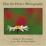 fine art flower photography