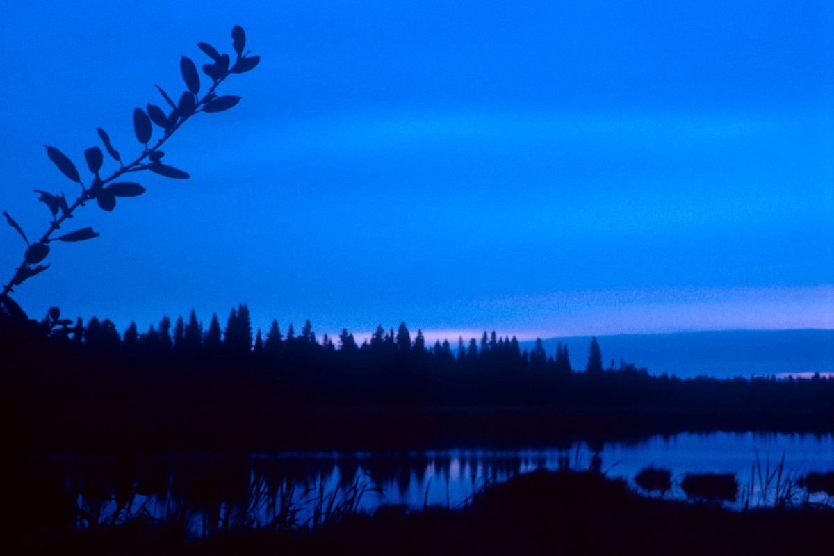 Manitoba Morning, 2004